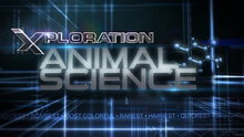 Xploration Animal Science - Episodes