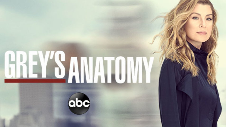 Watch Grey's Anatomy Episodes on ABC | Season 15 (2019 ...