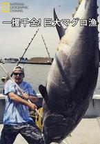 一攫千金! 巨大マグロ漁