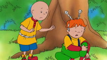 Caillou: Friends (Caillou's Fun Outside!)