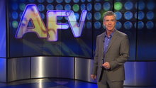America's Funniest Home Videos: Grumpy Little Dogs and Practical Jokes
